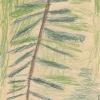 Zeichnung Jupident, Schuljahr 1969/1970