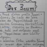 Der Baum - ein Text von Georg Paulmichl
