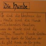 Die Hunde - ein Gedicht von Georg Paulmichl