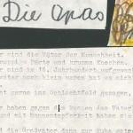 Die Opas - ein Gedicht von Georg Paulmichl