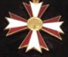 Foto Ehrenkreuz, aus: Prodr Nochrichtn