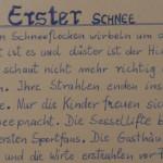 Erster Schnee - ein Text von Georg Paulmichl