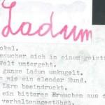 Ladum - ein Text von Georg Paulmichl
