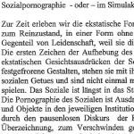 Sozialpornographie oder im Simulakrum des Sozialen - ein Text von Dietmar Raffeiner