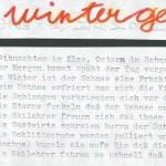 Wintergesicht - ein Text von Georg Paulmichl